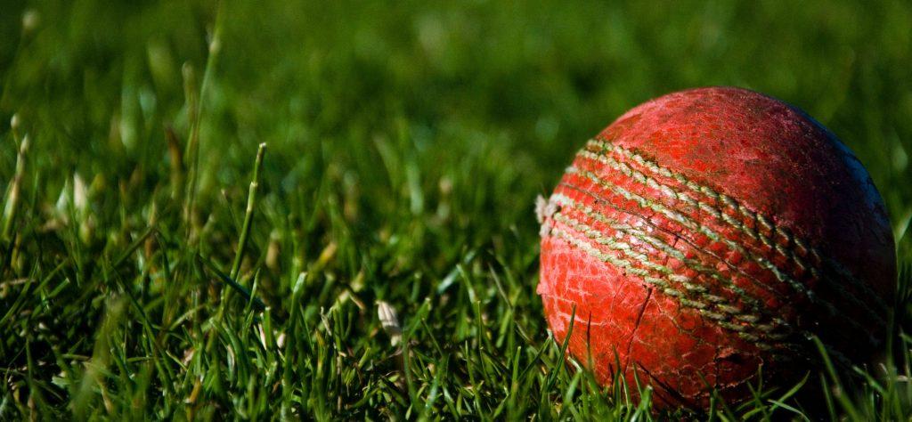 Mental Health Cricket